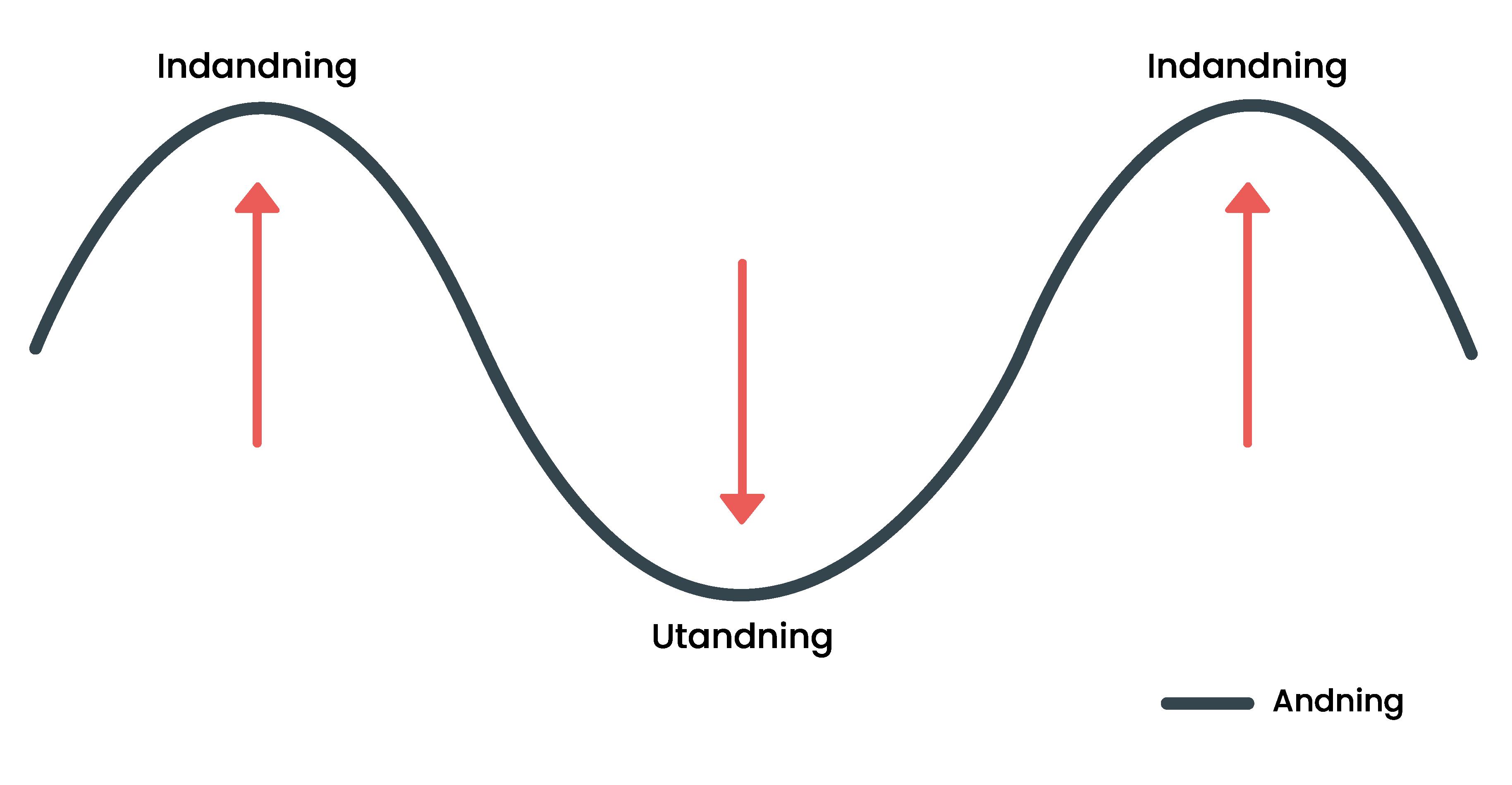 En svängande graf visar hur pulsen ökar och minskar i takt med andning.